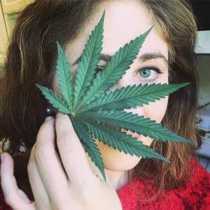 Leaf on Face